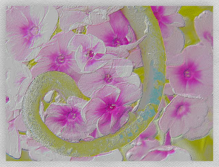 flower+watercolor+and+emboss2+b.jpg