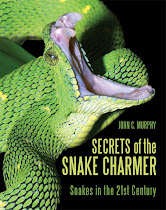 Secrets of the Snake Charmer