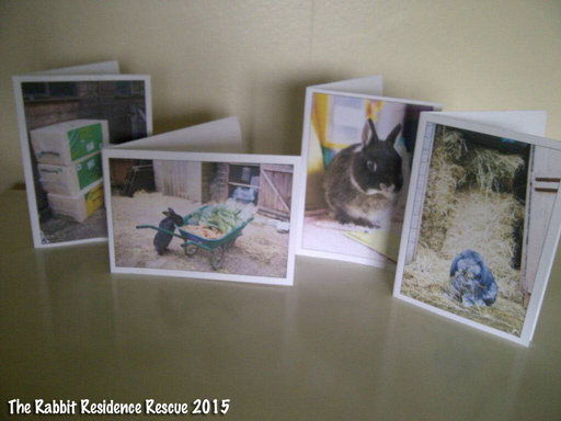 Big ears tiny tales the gift of easter want to get your loved ones something other than chocolate for easter how about a gift for our rescue bunnies negle Images