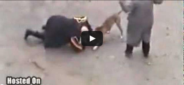 Pitbull ataca a los dueños y la policia lo mata a tiros (en vivo)