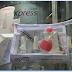 Empório das Unhas: Manicure Express