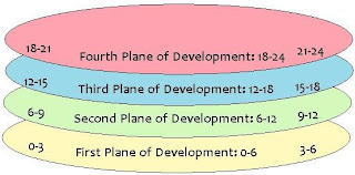 four planes of development essay