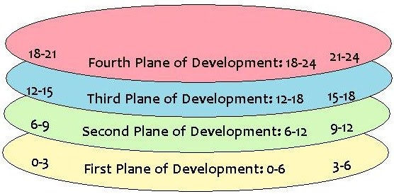 the four planes of development Components of the comprehensive life development plans of four indigenous organizations of the vaupés department,  y los planes y programas de.