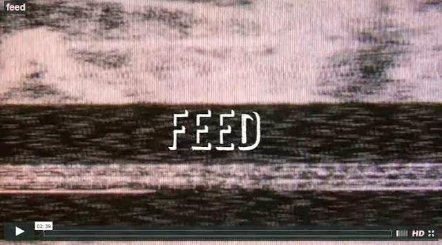 feed dane reynolds