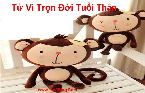 Tu Vi Tron Doi Tuoi Than