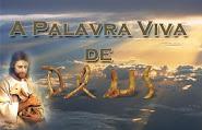 Programa PVD AO VIVO *****clique abaixo*****