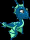 Dragón de mar bebe