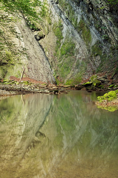 Image of a cliff reflected on Fornant river