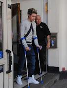 Niall Horan dijo que su lesión de rodilla se la debe a una ardilla. niall ardilla