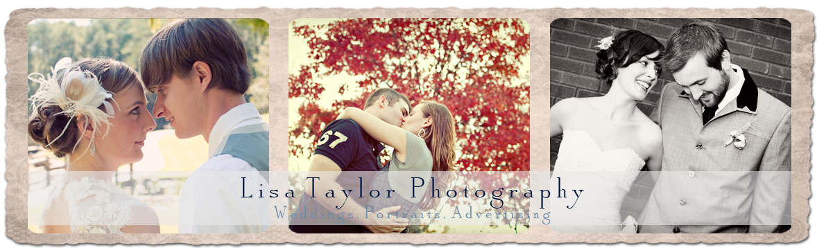 LISA TAYLOR PHOTOGRAPHY BLOG