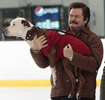 Tv Review Parks And Recreation Season 5 Episode 6 I