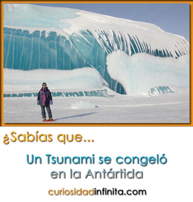 tsunami congelado en la antartida, antartica