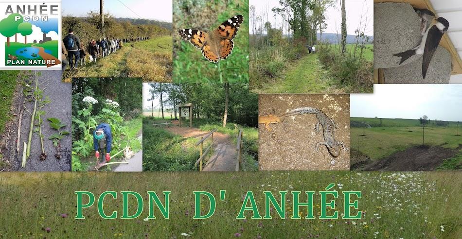 PCDN D'ANHEE