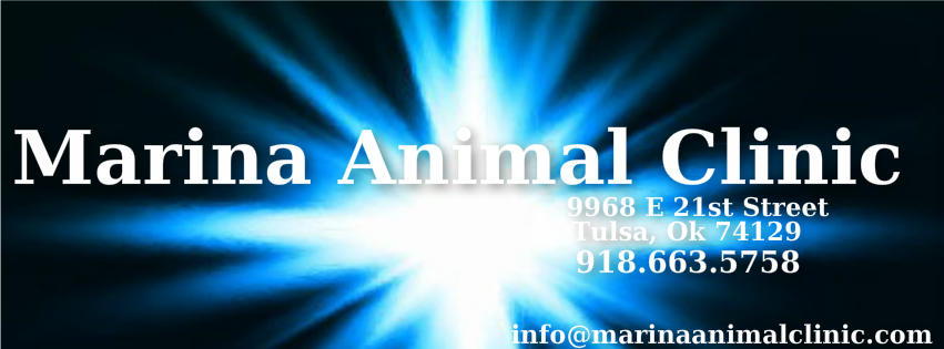 Marina Animal Clinic