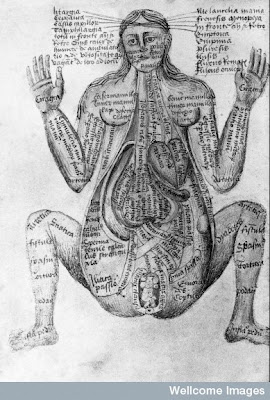 old books - human body illustration