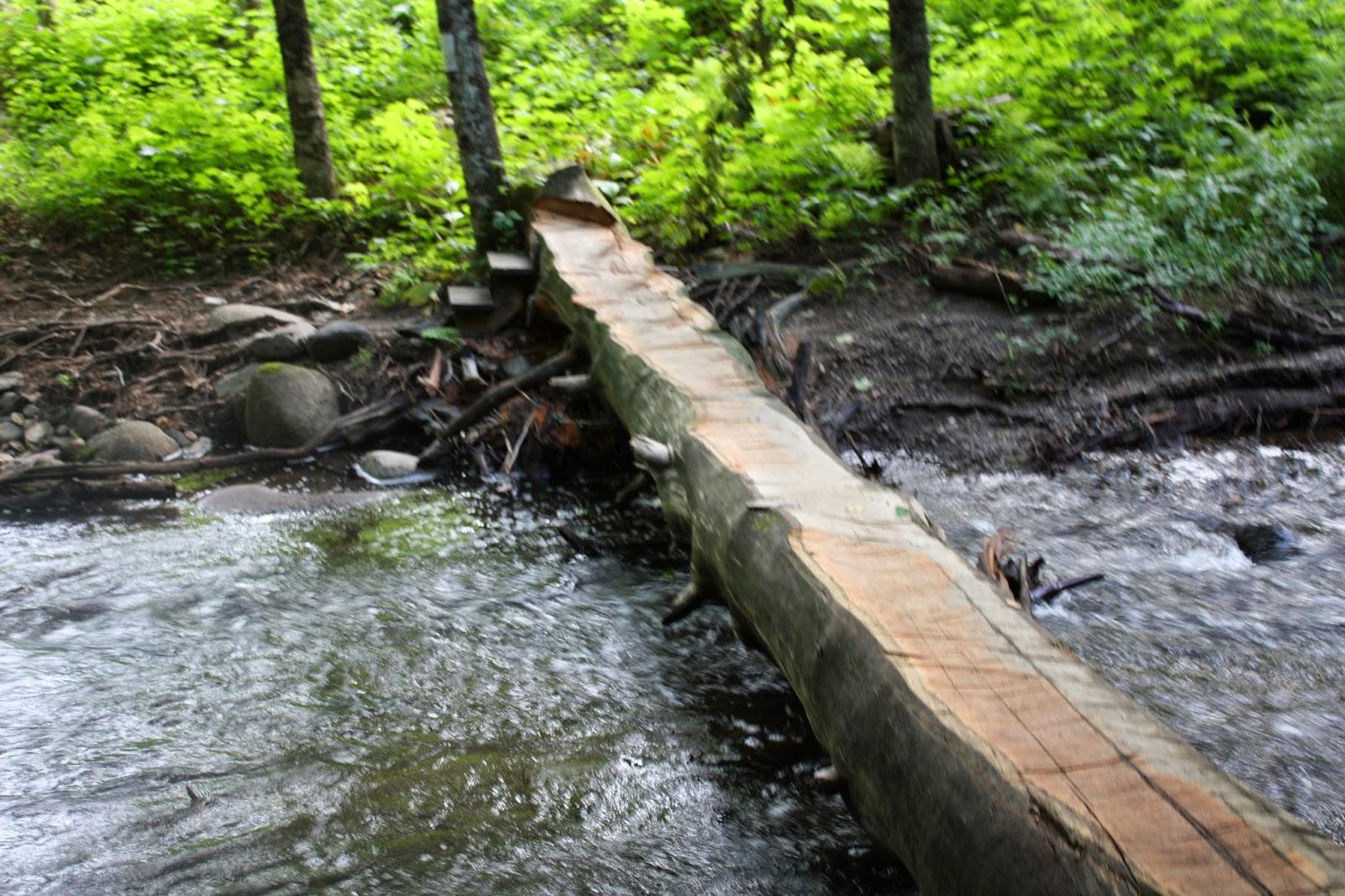 log camp ogontz river