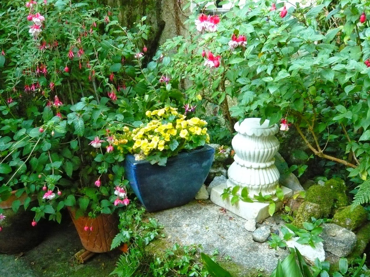 Mi jard n mi para so octubre perfumado for Casa jardin 8 de octubre