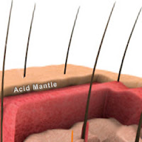 acid mantle