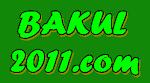 bakul2011.com