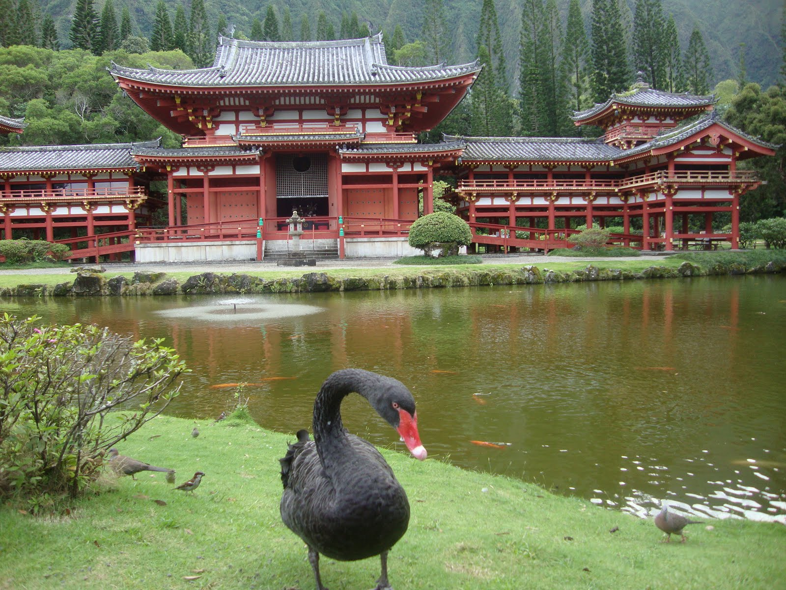 swan valley buddhist singles Select your location to enter site news and information from ups, track your shipment, create a new shipment or schedule a pickup, caluclate time and costs or find a.