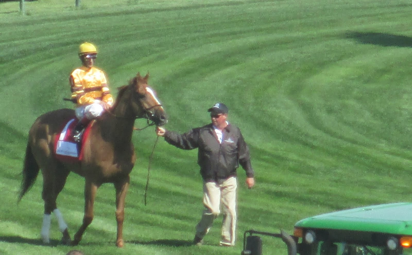 Wise Dan at Churchill