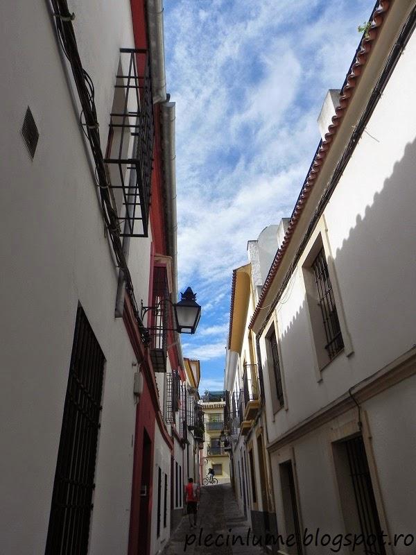 Strada in Cordoba