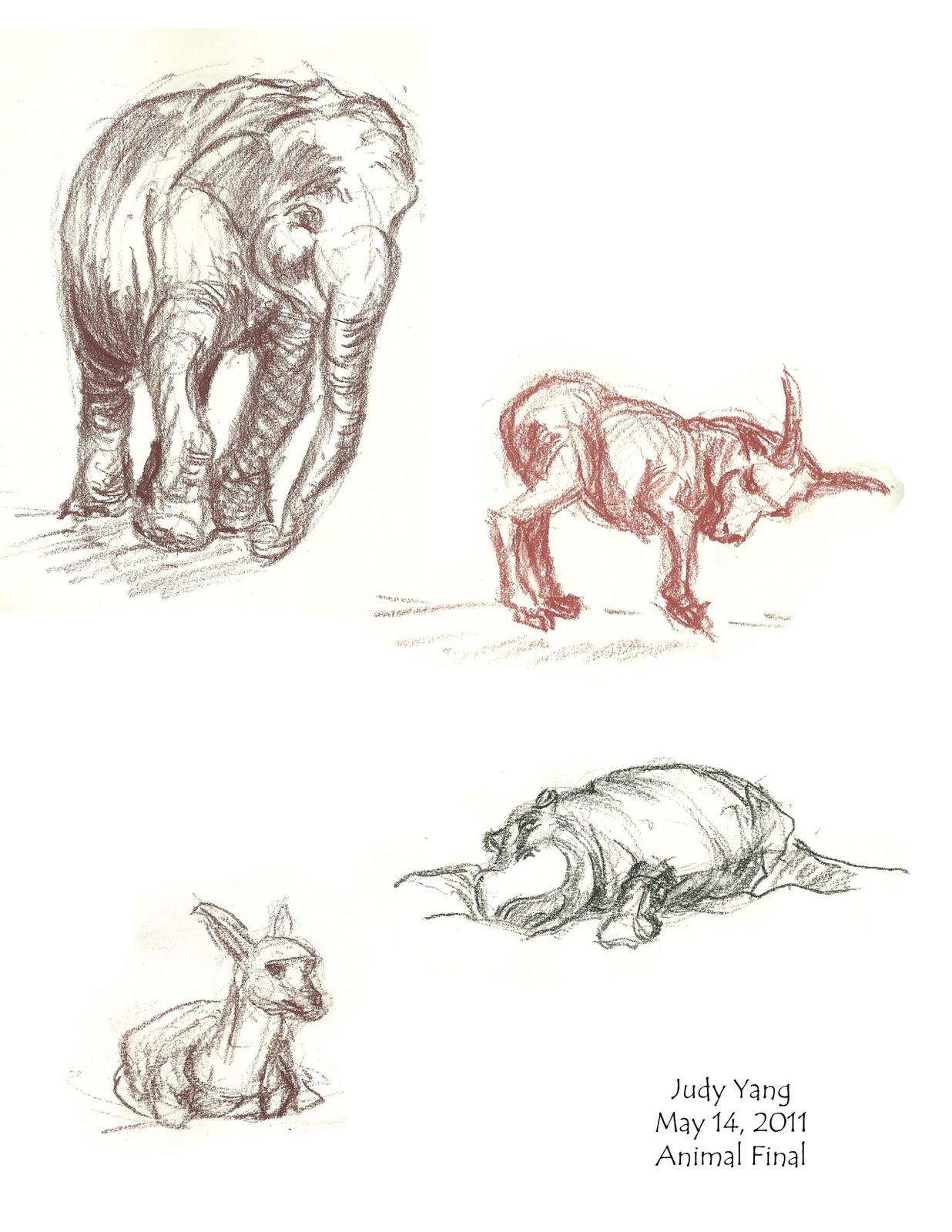 Scribble Drawing Portraits : Scribble animal drawings