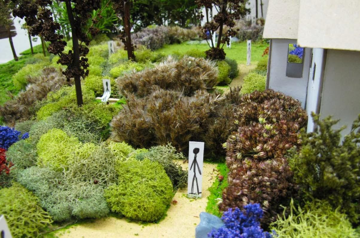 Environmental Design Landscape Architecture Home Design Health
