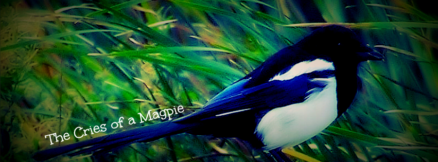 The Cries of a Magpie