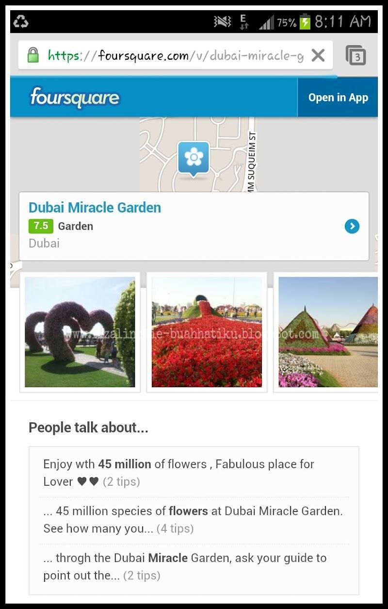 Bercuti Di Miracle Garden, Dubai