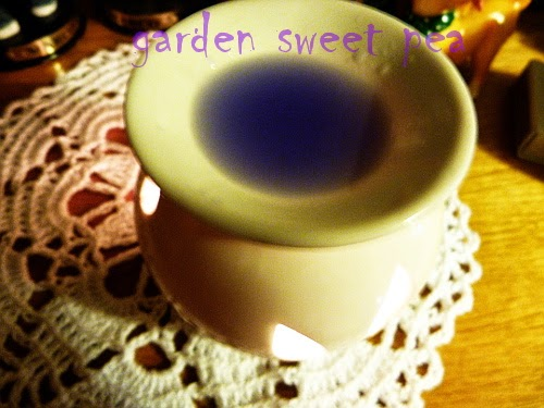 yankee candle słodki pachnący groszek
