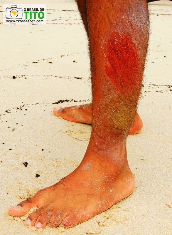 Diferentes tonalidades de argila encontradas no barranco da praia do Vai-Quem-Quer, na ilha de Cotijuba, no Pará