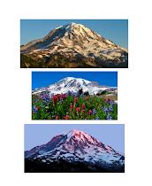 Mt. Rainier Blank Cards