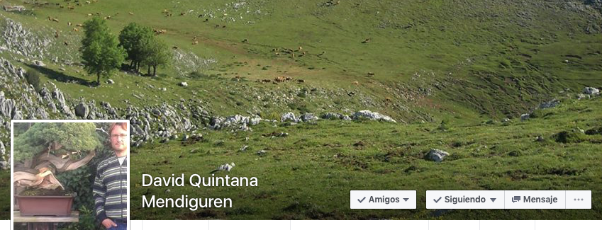David Quintana Mendiguren