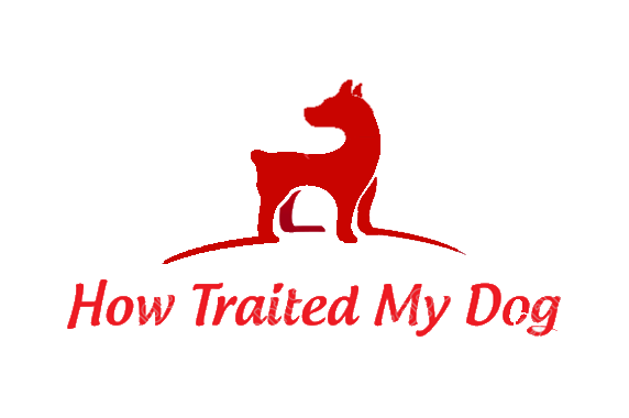 How Treated My Dog