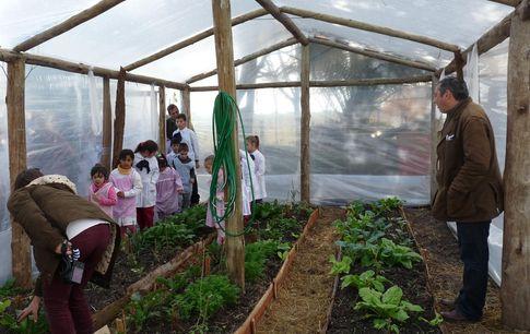 Noticias d cimo proyecto de huertas org nicas en escuelas for Proyectos de construccion de escuelas