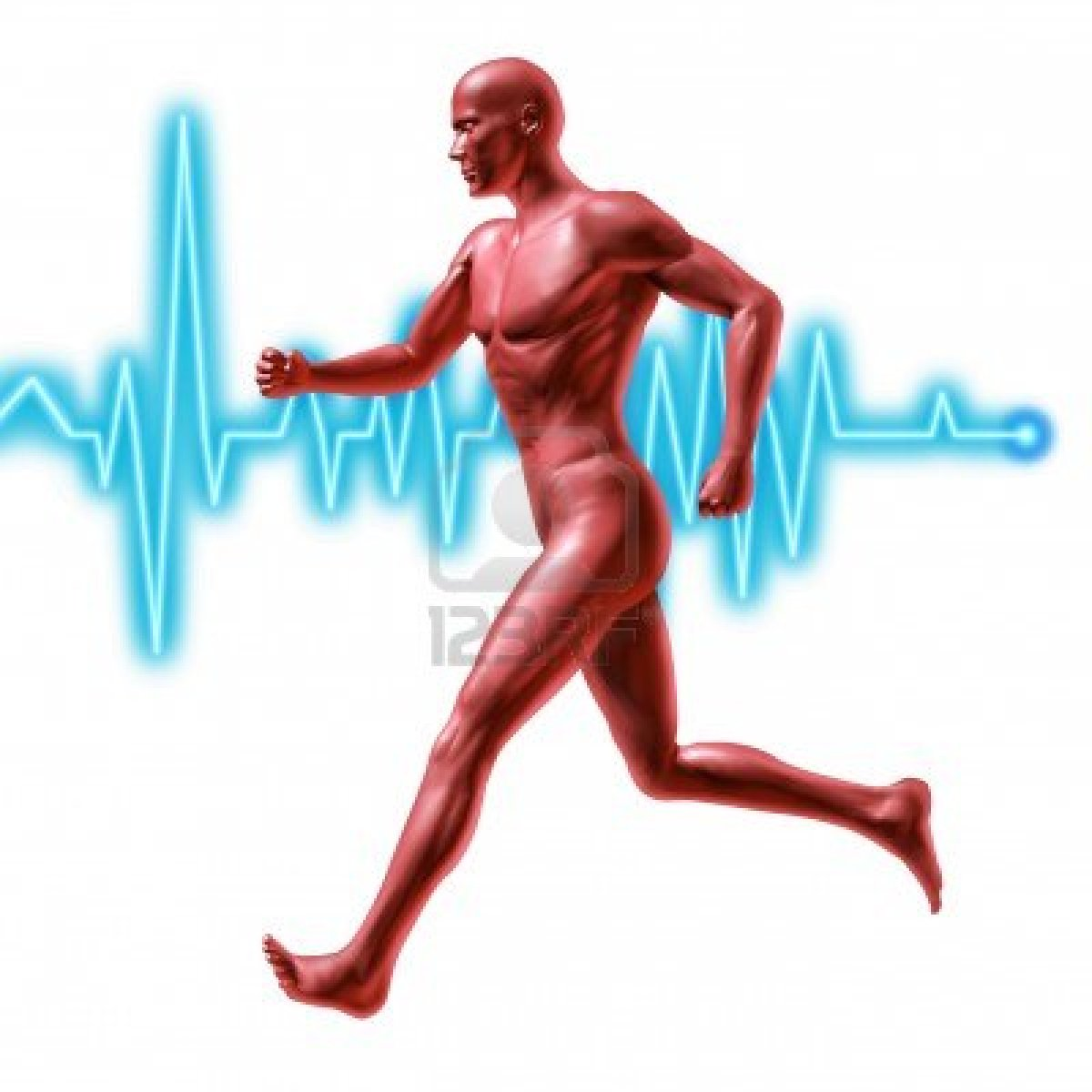 performance edge chiropractic pc  moderate physical activity associated with lower risk of heart