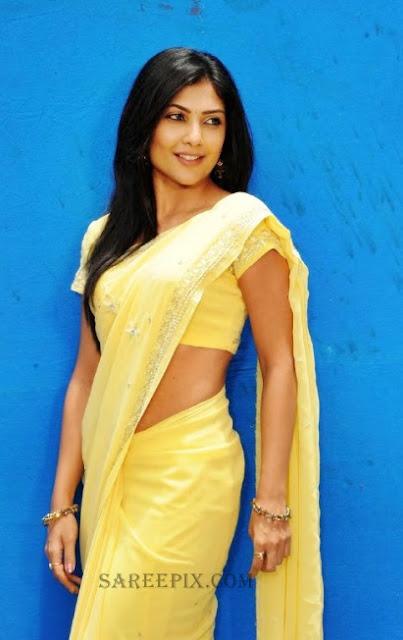 kamalini mukharjee photoshoot in yellow saree