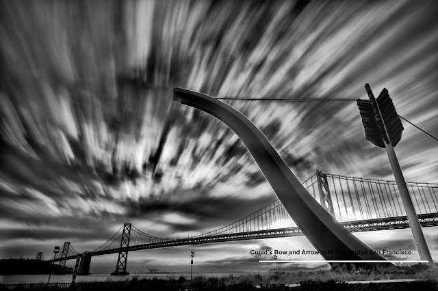 Photography by David Yu
