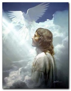 Holy spirit photo of Jesus with white dove