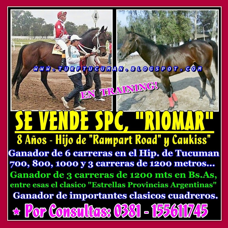 VENTA RIOMAR
