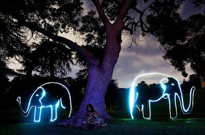 Elefánt  fénnyel