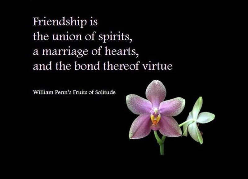 Famous Quote About Friendship Fair Day Celebration Quotes On Friendship Day