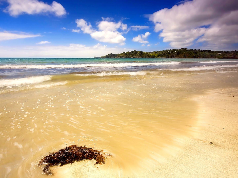 http://4.bp.blogspot.com/-lWCwD96oh-I/TZUMrtpuDkI/AAAAAAAAAFg/OhLz4VDzuYE/s1600/lemadesu.blogspot.com--The-best-top-desktop-beach-wallpapers-hd-beach-wallpaper-4.jpeg