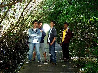 hutan mangrove.jpg