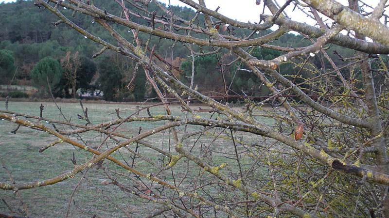 Franclips de begues al puig de les agulles per les clotes i el parc natural del garraf ruta - Temperatura en begues ...