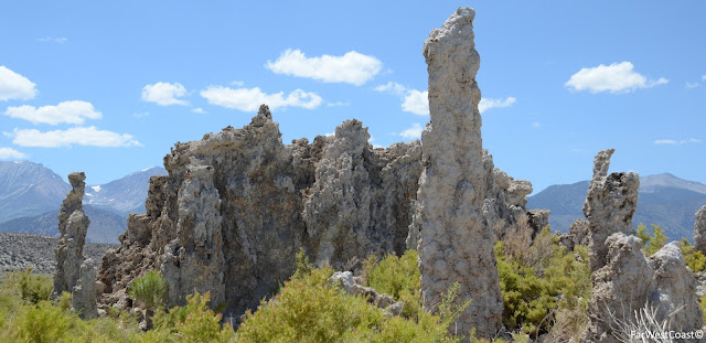 Tufas, Mono Lake, Californie