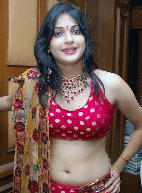 Tamil Actress Nicole Blouse Stills