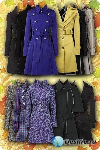 Kadınlar için moda kıyafetler Psd