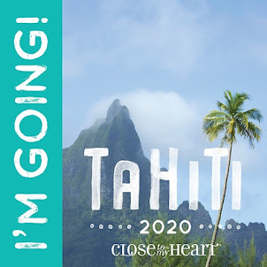 THANK YOU!! I was able to Earn my 10th Incentive Trip with CTMH!!